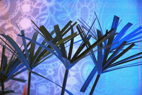 Bambous Garden Villa